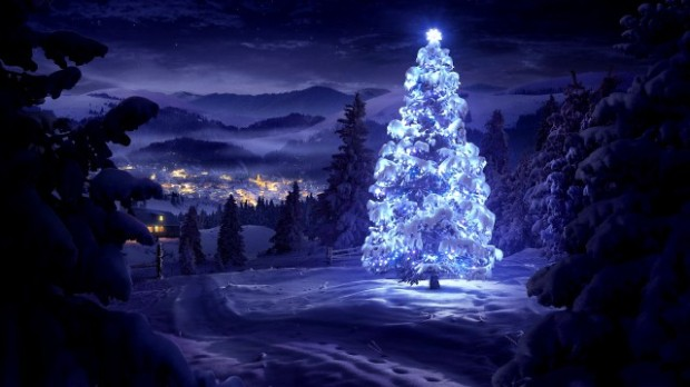 beautiful-christmas-tree_100746